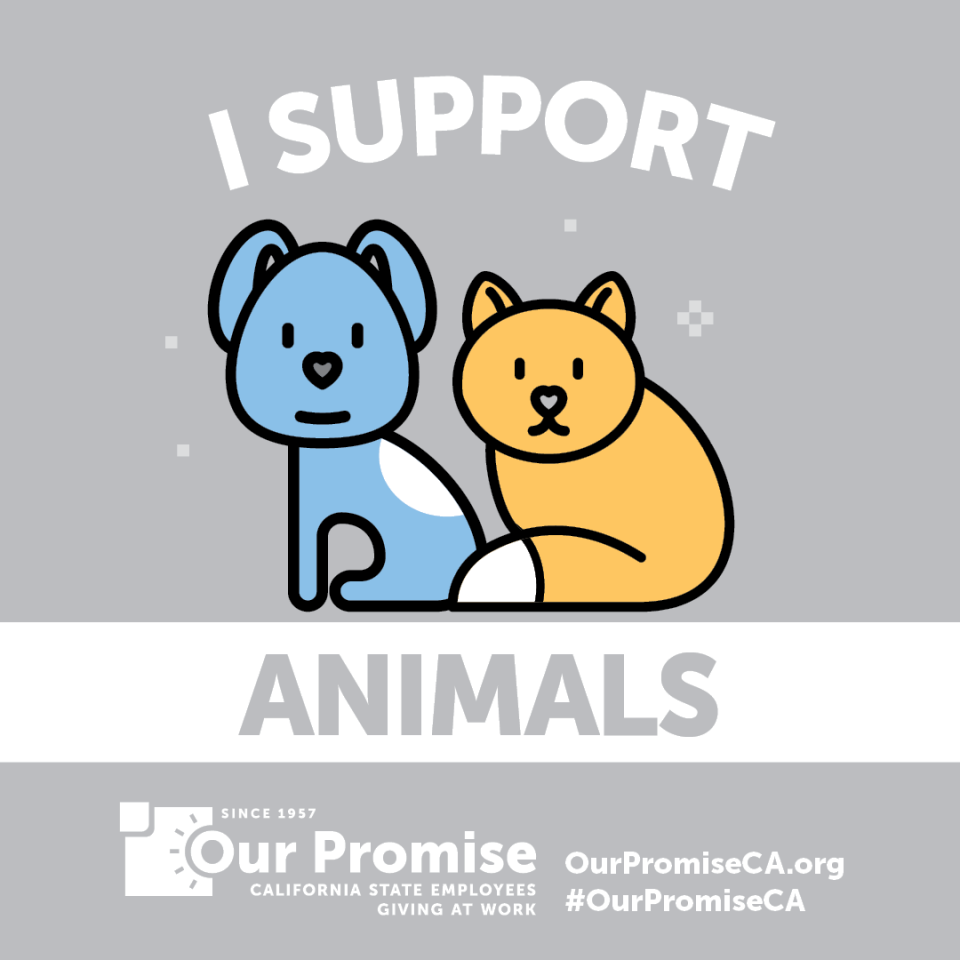 I Support: ANIMALS. cartoony cat and dog.