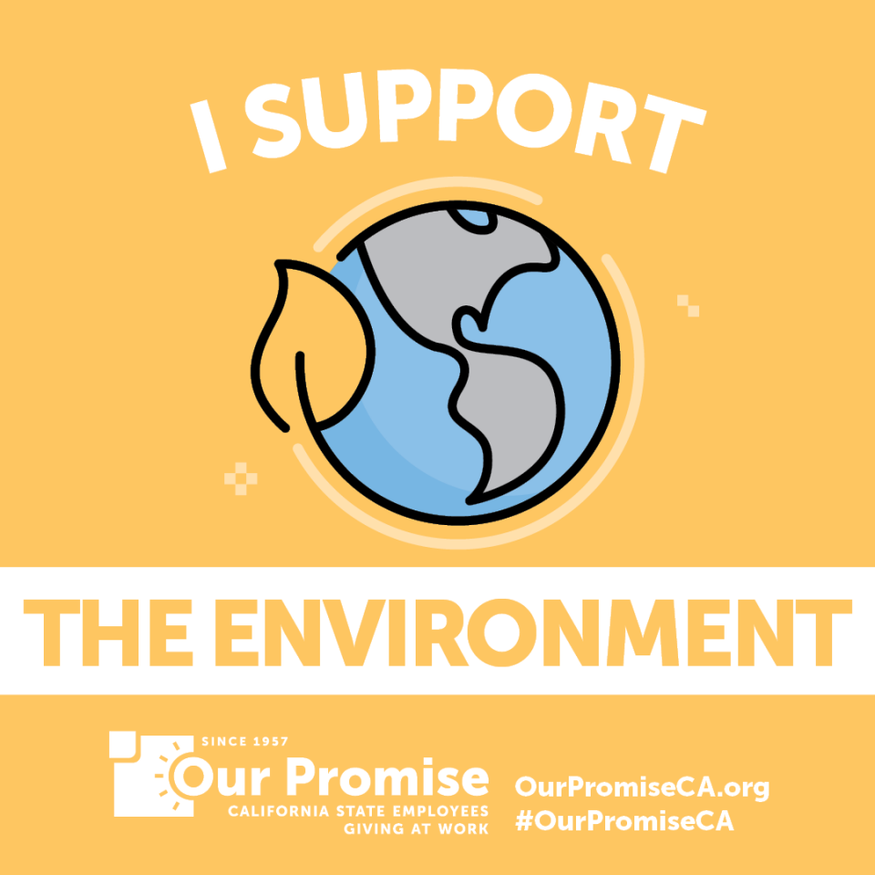 I Support: THE ENVIRONMENT. icon globe.